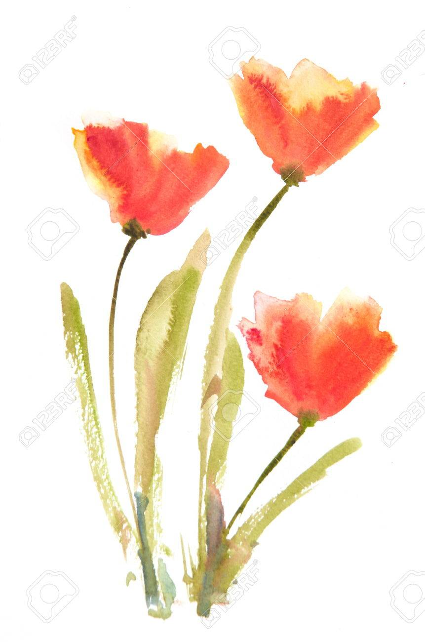 Poppy flowers paintingwatercolor painting stock photo picture and poppy flowers paintingwatercolor painting stock photo 64054165 mightylinksfo Image collections