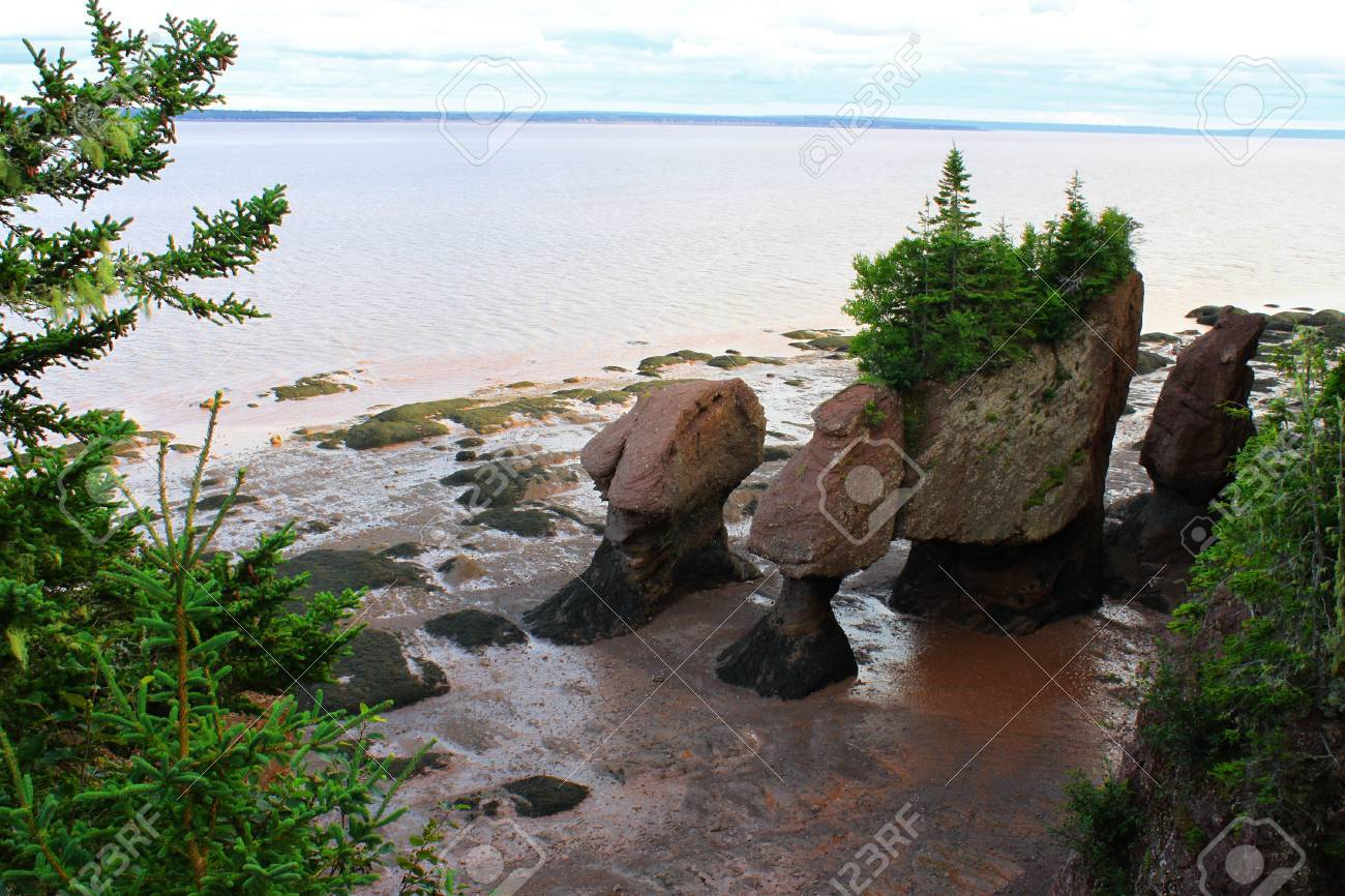 Muddy water with the low tide overlooking the Flowerpot rocks at Hopewell Rocks New Brunswick & Muddy Water With The Low Tide Overlooking The Flowerpot Rocks ...