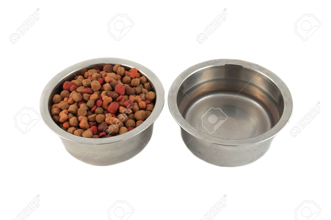 Uncategorized Dog Food And Water Bowl dog food and water bowls the best 2017 super design clic removable stainless steel pet water