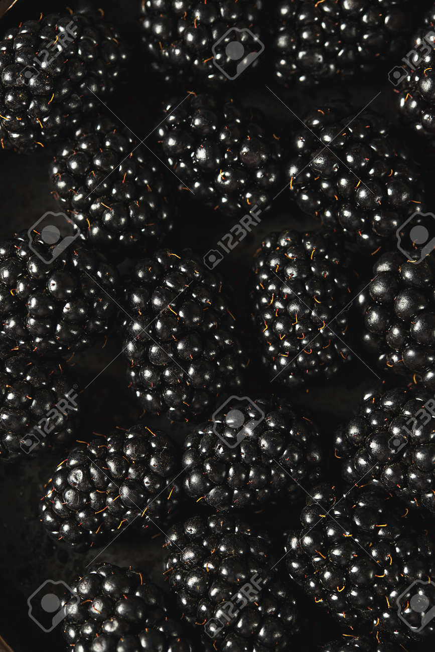 Fresh ripe blackberries as background, top view. Food concept. Blackberries decorated with edible gold powder. Top view. - 171890455