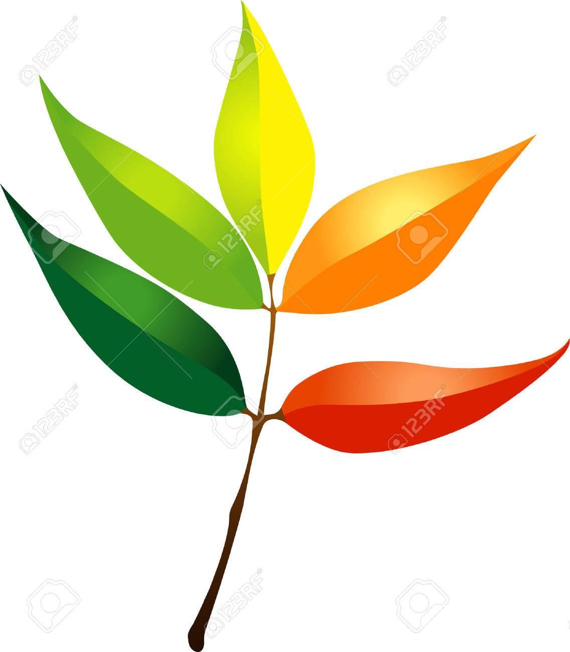Autumn leaf - 6737442