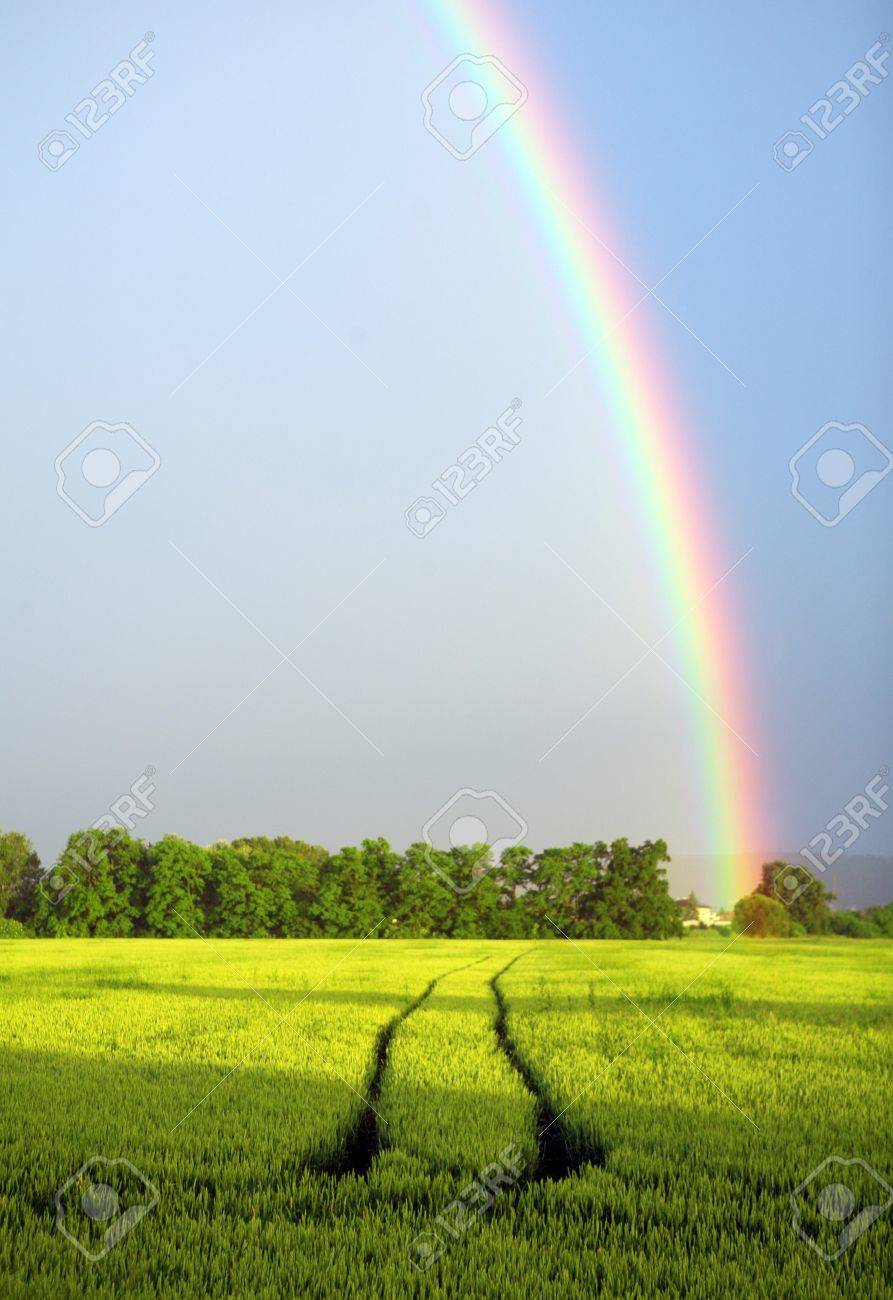 Rainbow on blue sky over the rural landscape - 7666288