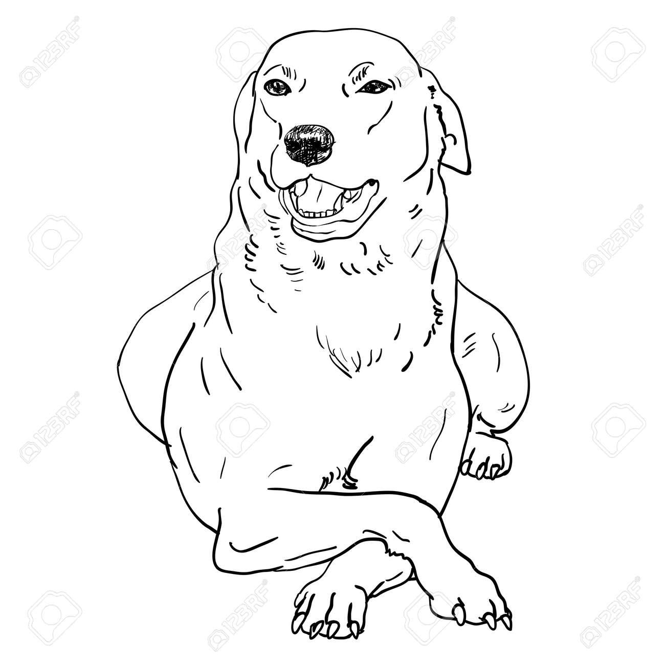 How To Draw A Dog Laying Down Step By Step Jpg 1300x1300 Dogs Puppies Laying  Down