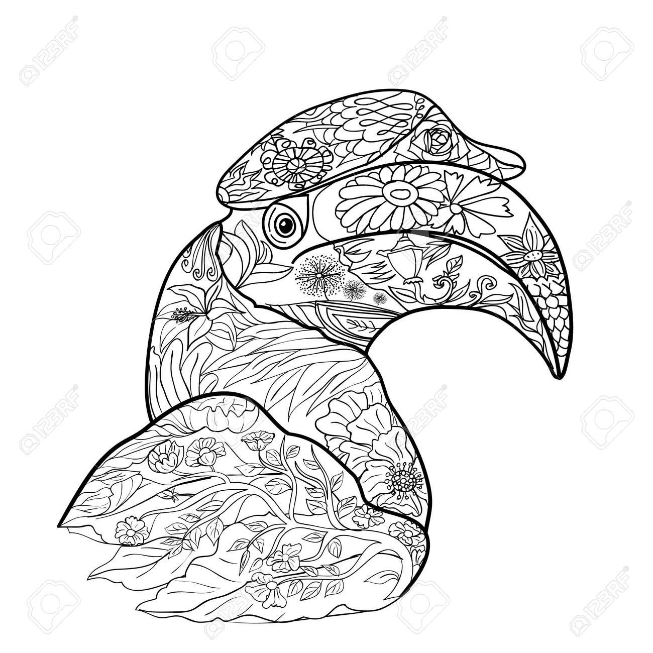 Línea De Arte Para La Coloración De Gran Pájaro Cálao Sobre Fondo ...