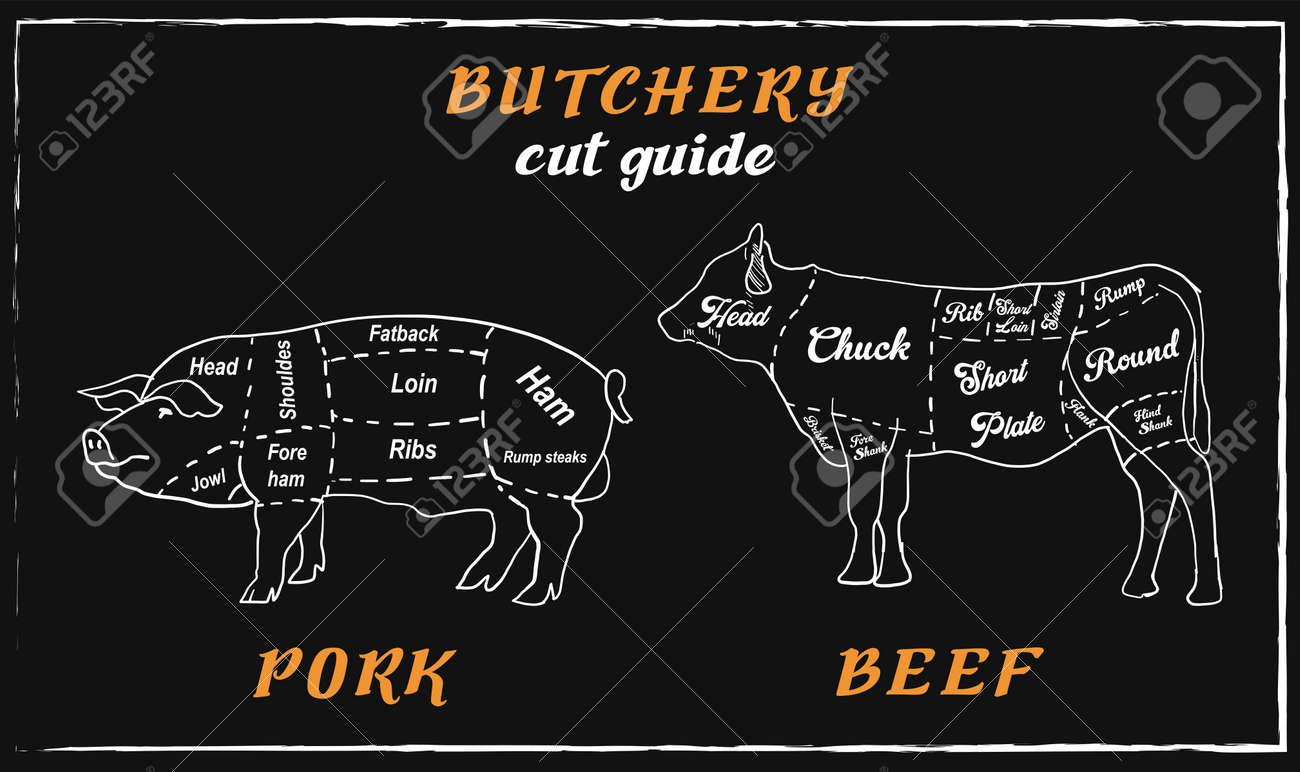 Steak menu for restaurant and cafe. Food flyer. Design layout with vintage lettering and doodle hand-drawn graphic icons. Vector. - 158025190
