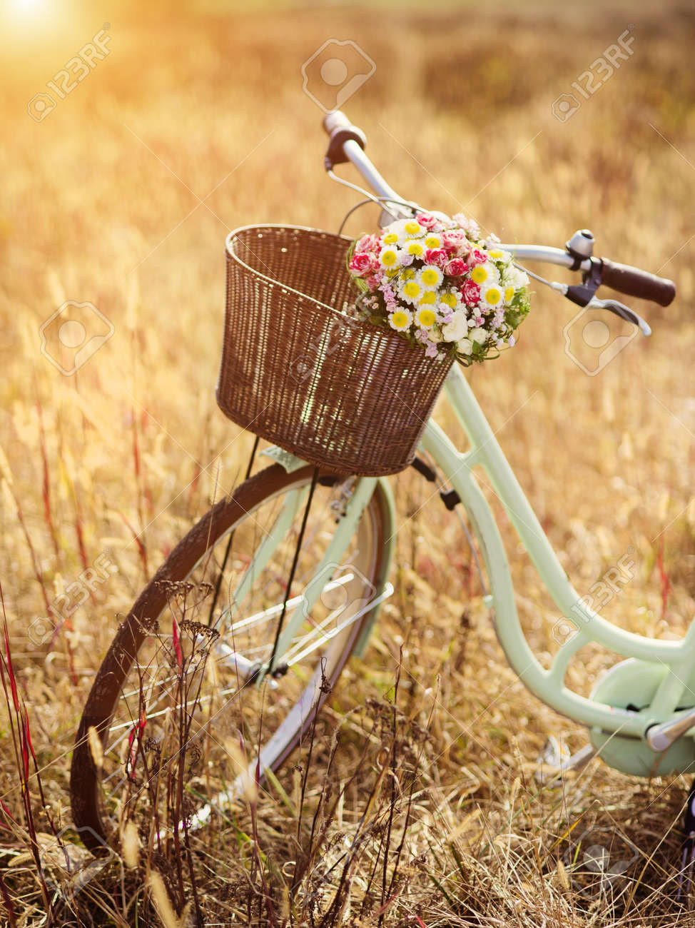 Vintage bicycle with basket full of flowers standing in the field - 38163154