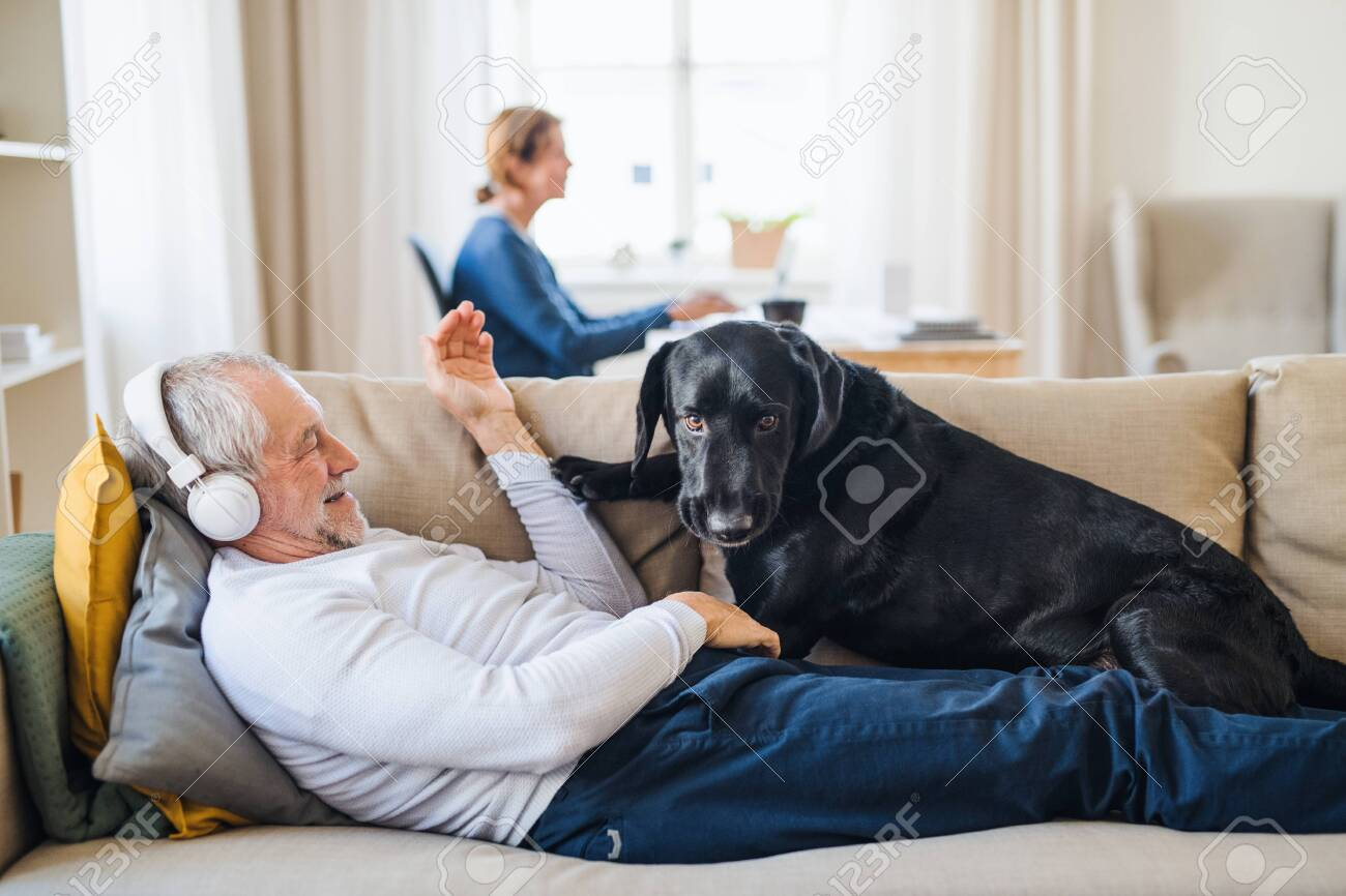 A happy senior couple indoors with a pet dog at home, using laptop and headphones. - 115337823