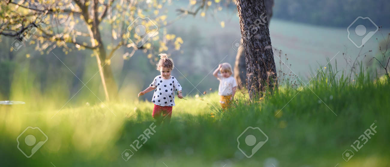 Small children boy and girl playing outdoors in spring nature. - 146611948