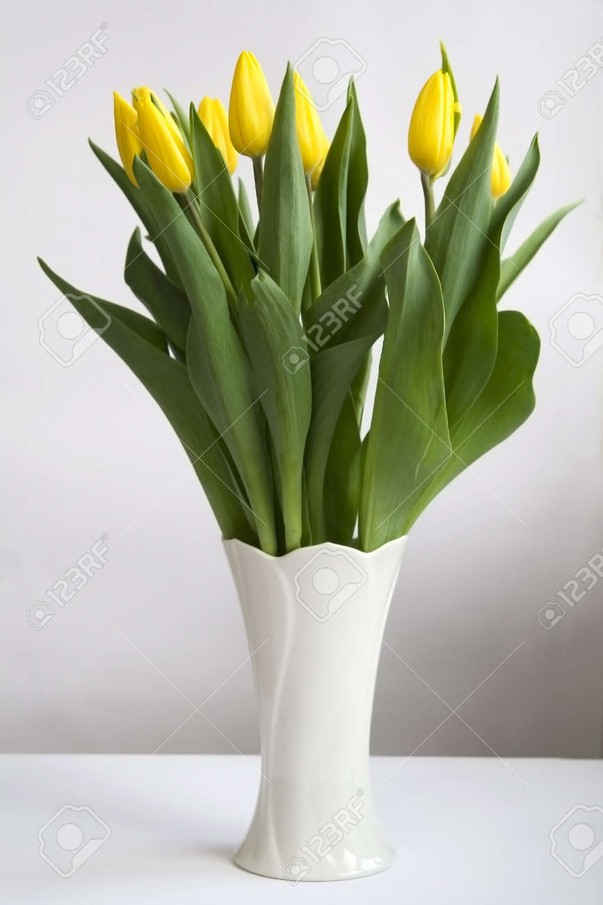 Bunch of yellow tulips in white vase stock photo picture and bunch of yellow tulips in white vase stock photo 15063883 floridaeventfo Gallery