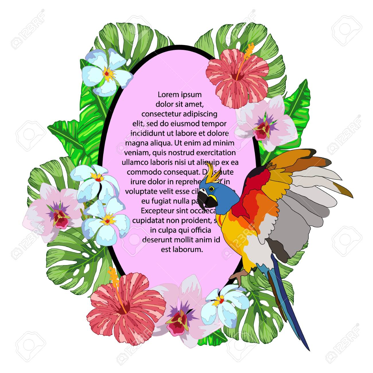composition with a banner for text with tropical flowers, leaves monster and parrot, vector illustration, isolate - 152195320