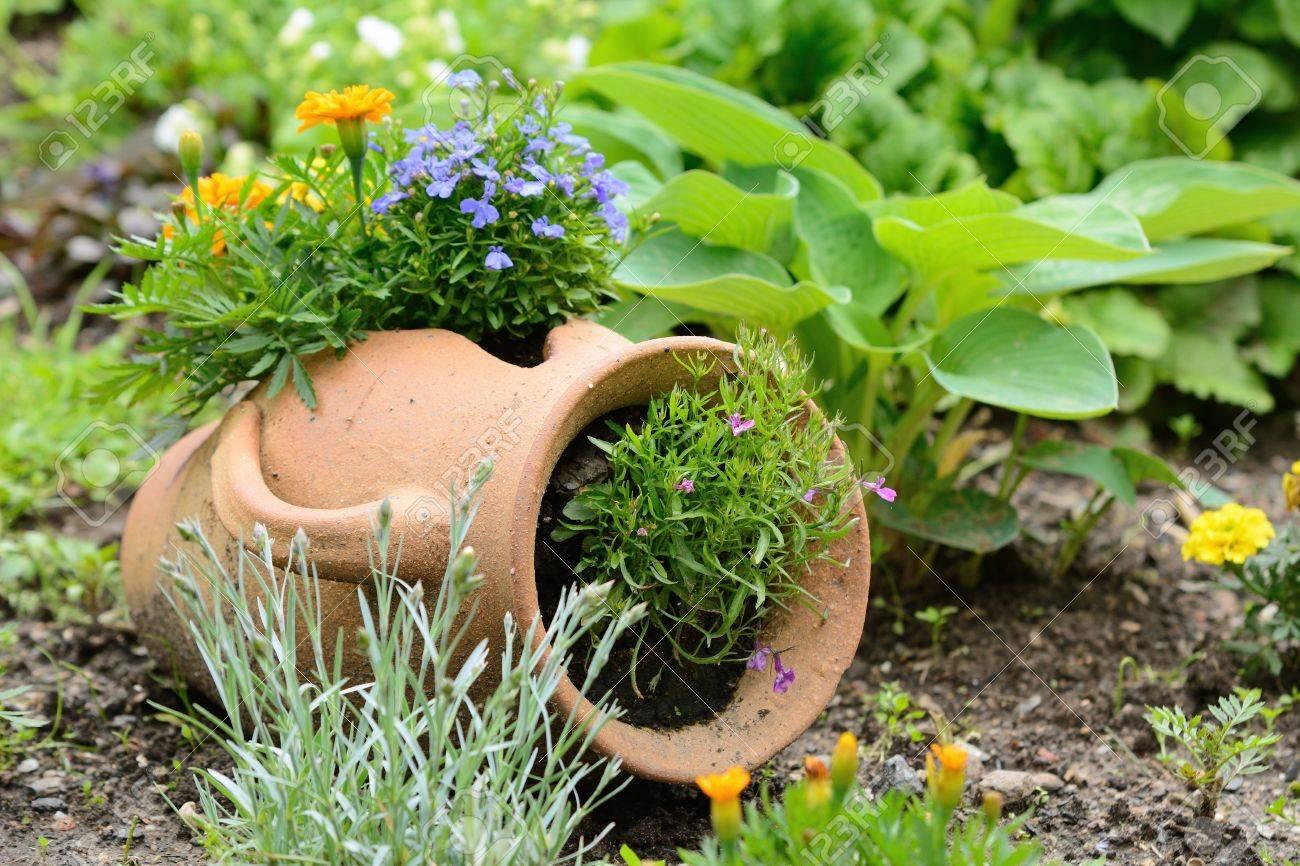 Keramik Krug Im Garten Bett Mit Orange Und Lila Blumen Lizenzfreie