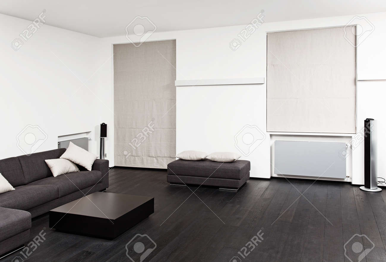 Part of modern sitting room interior in black and white tones Stock Photo - 14883162