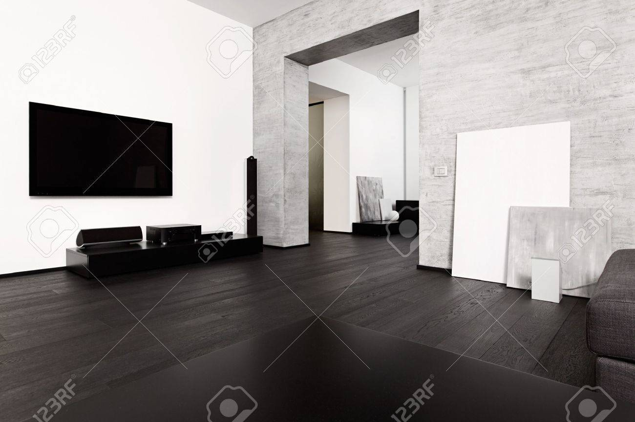 Modern minimalism style drawing-room interior in black and white tones Stock Photo - 15766927