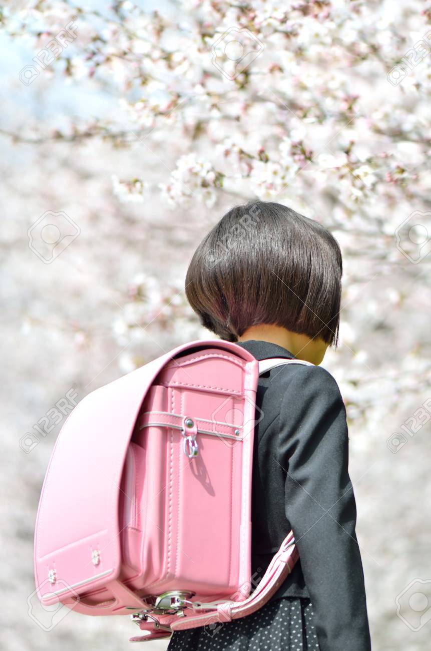 The first grade girl and cherry blossom (rear view) - 72089999