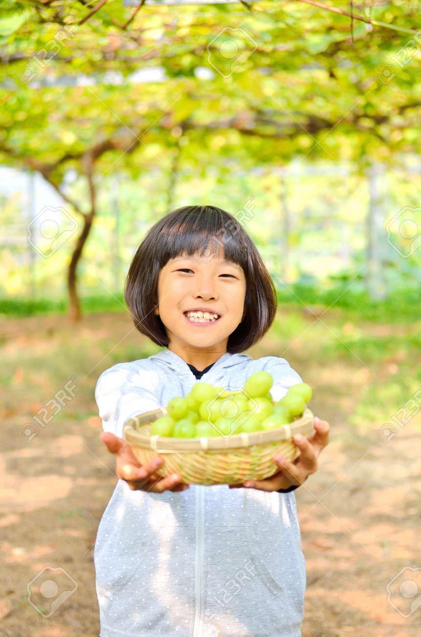 Girls enjoy grape picking - 73106158