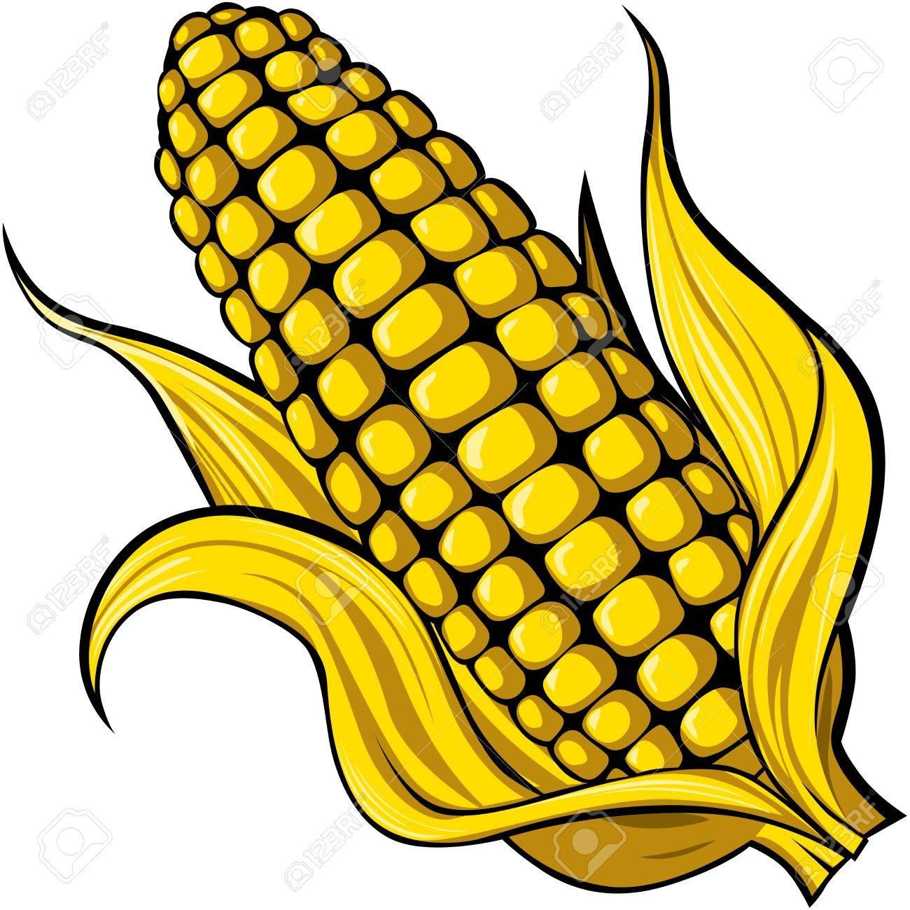 corn - 13847846