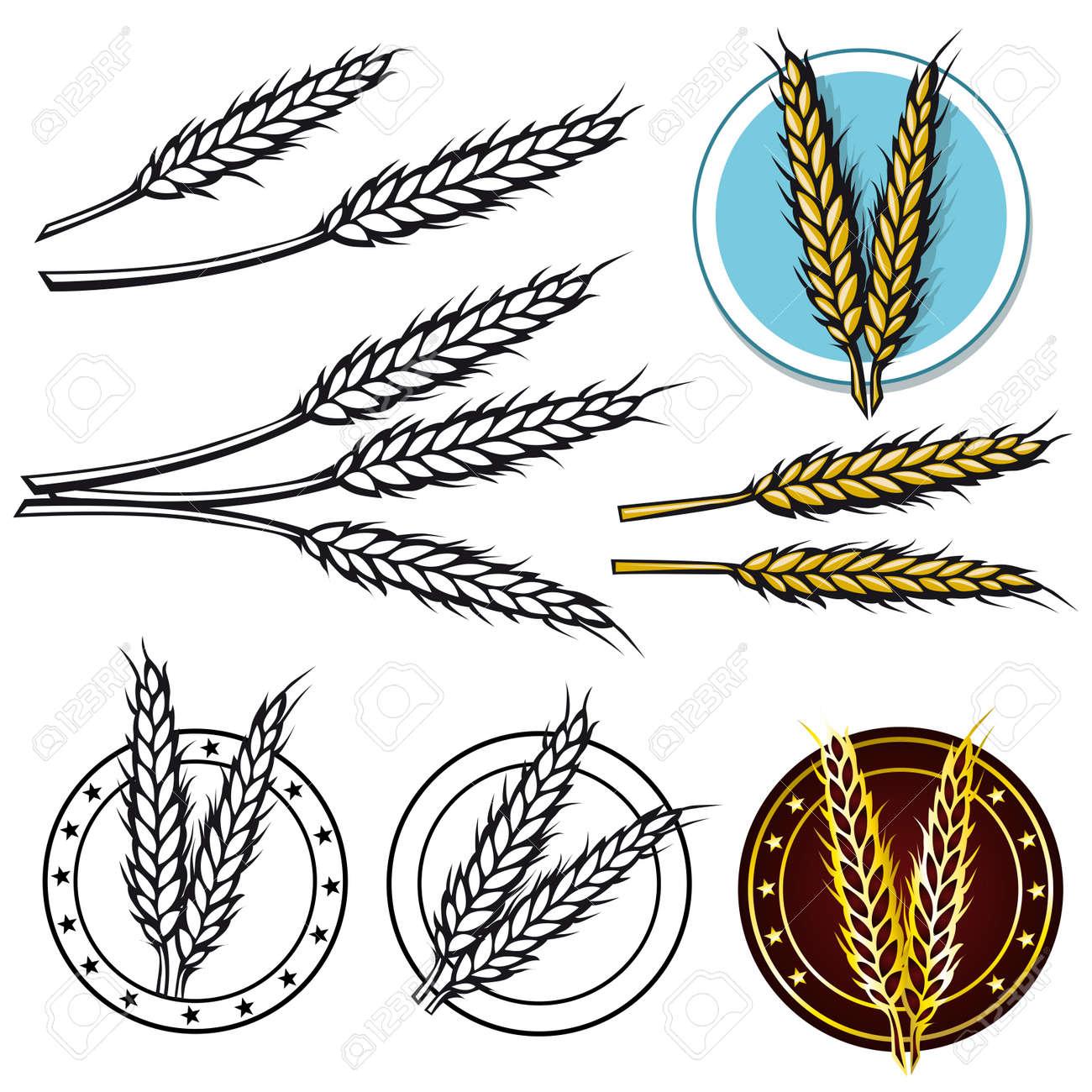 grain icon Stock Vector - 14092876