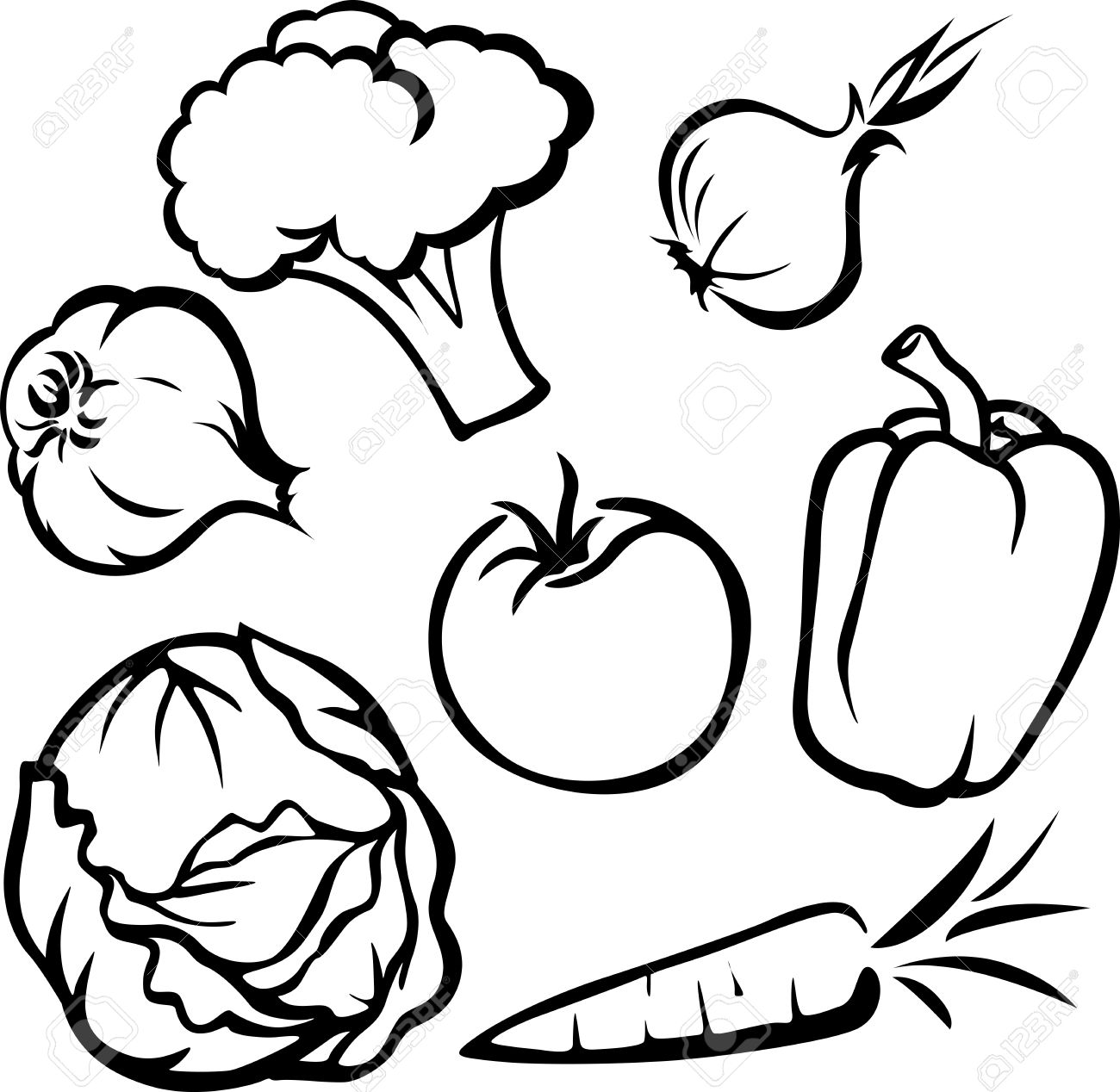 vegetable illustration black outline on white background royalty