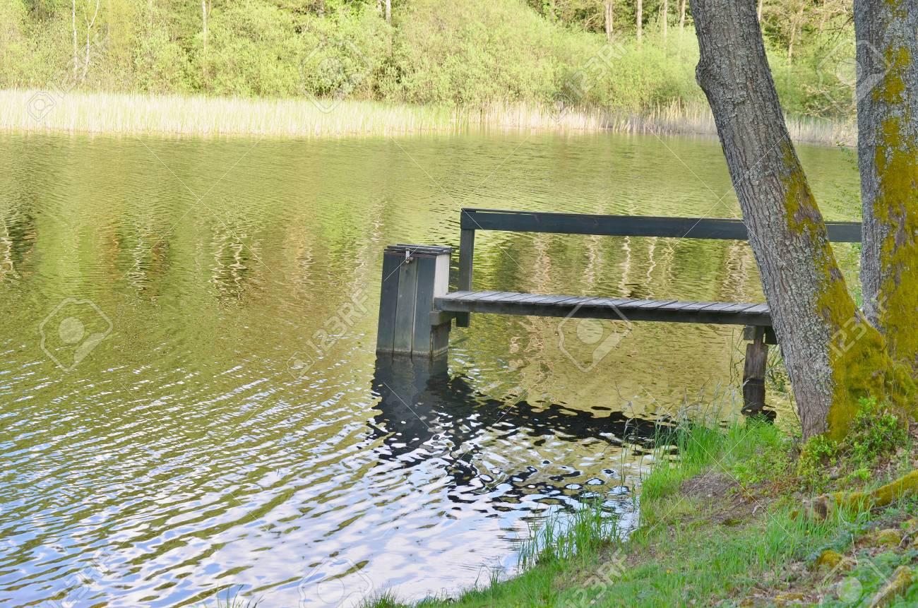 draining the pond , South Bohemia, Czech Republic Stock Photo - 79215698
