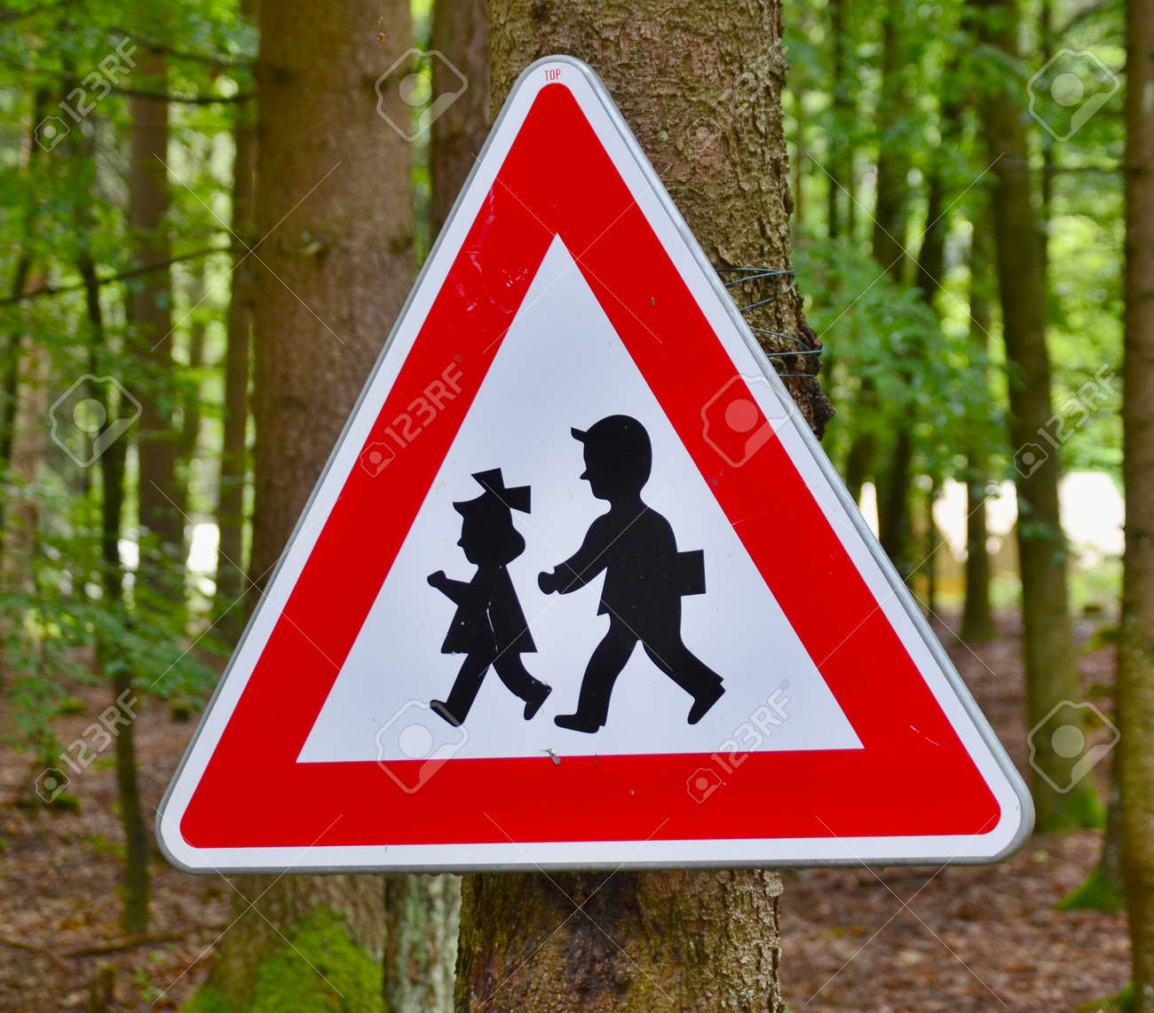traffic sign watch children, South Bohemia, Czech Republic Stock Photo - 85611606