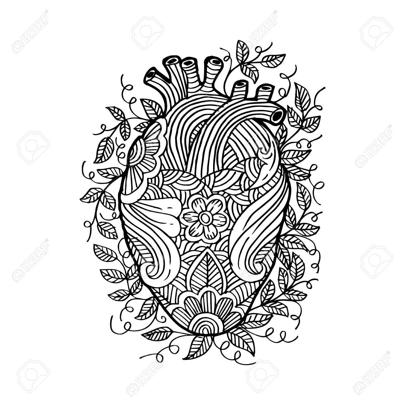 Hand drawing sketch human heart . - 129151050