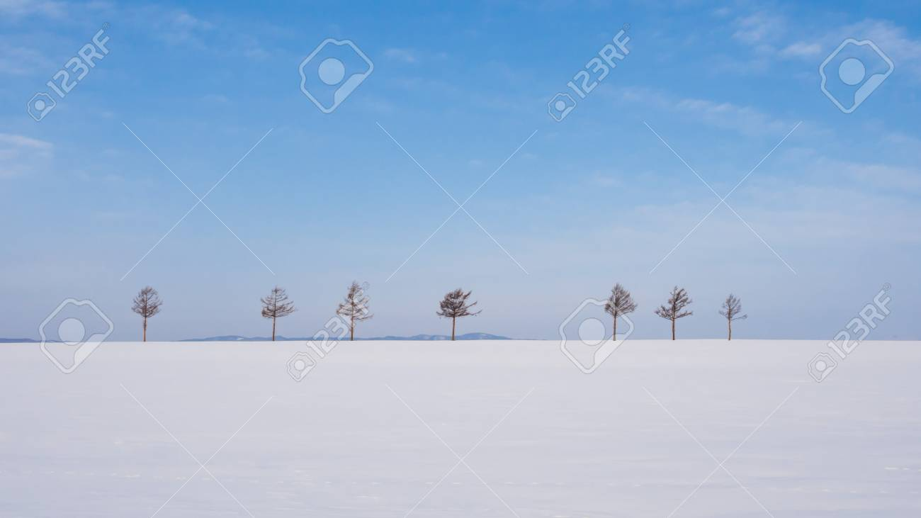 Marchen Hill (Fairy Tales Hill) Covering By White Winter Snow ...