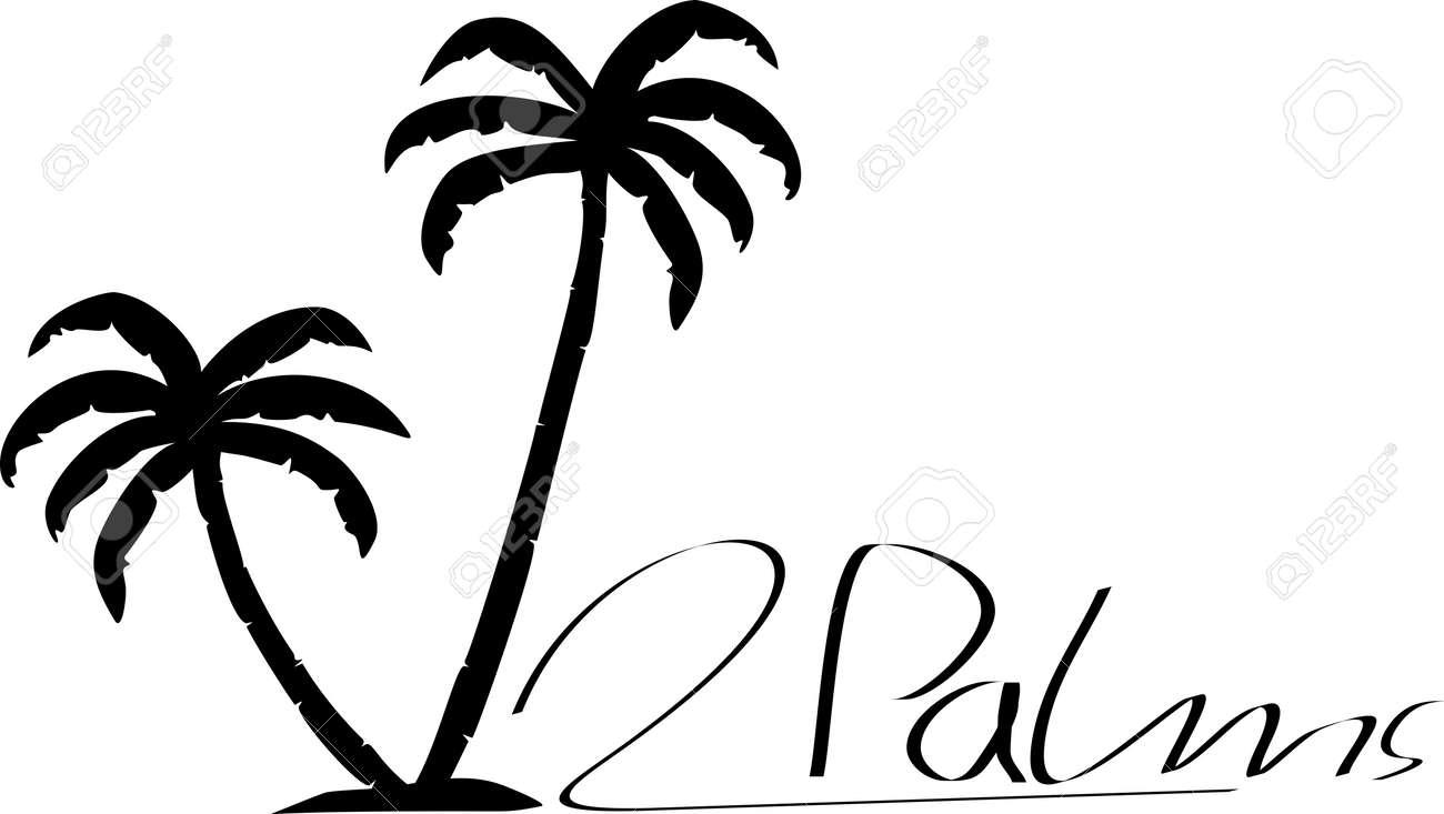 Black / White Palm silhouette vector Archivio Fotografico - 12603932