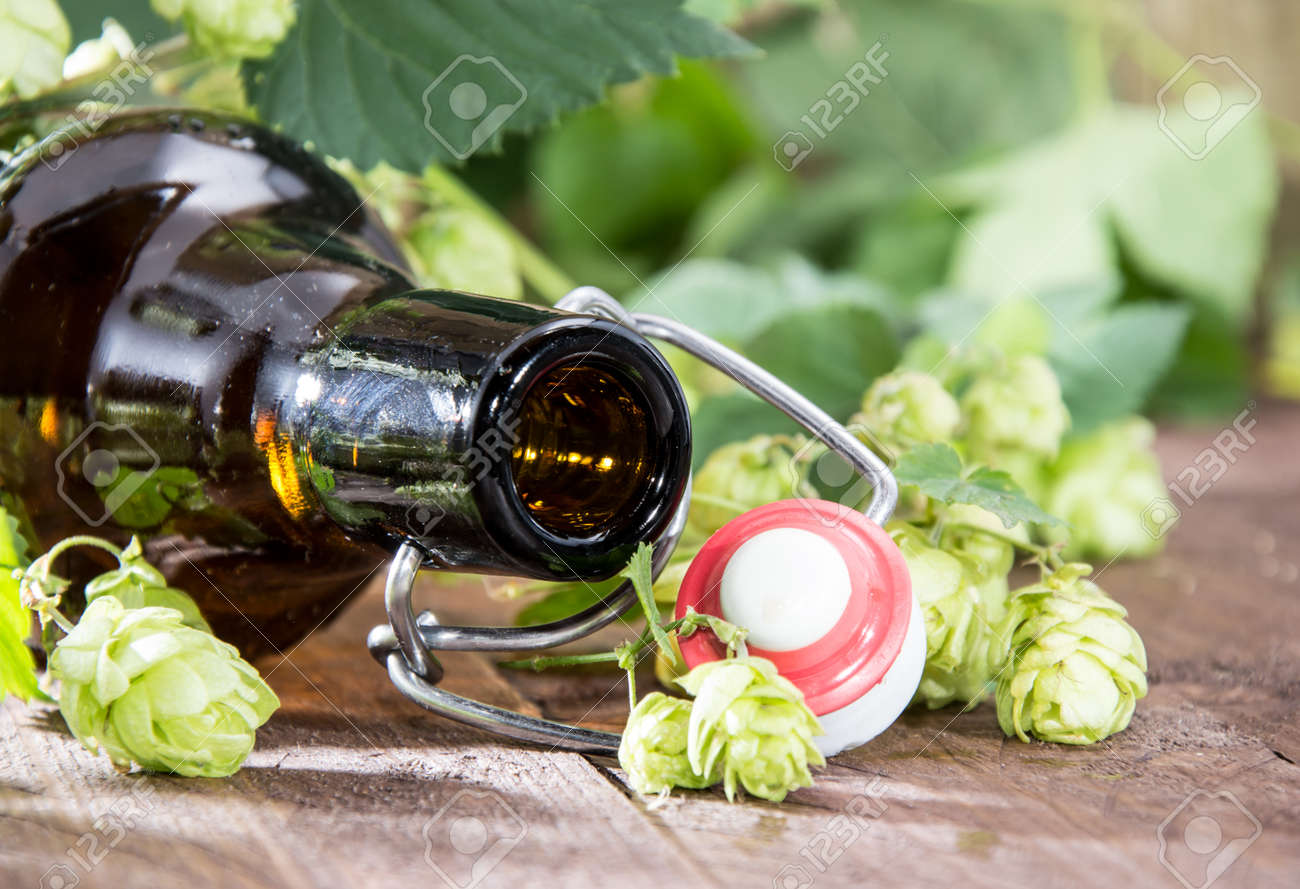 Empty bottle of Beer with Hops (macro) on wooden background Stock Photo - 15469801