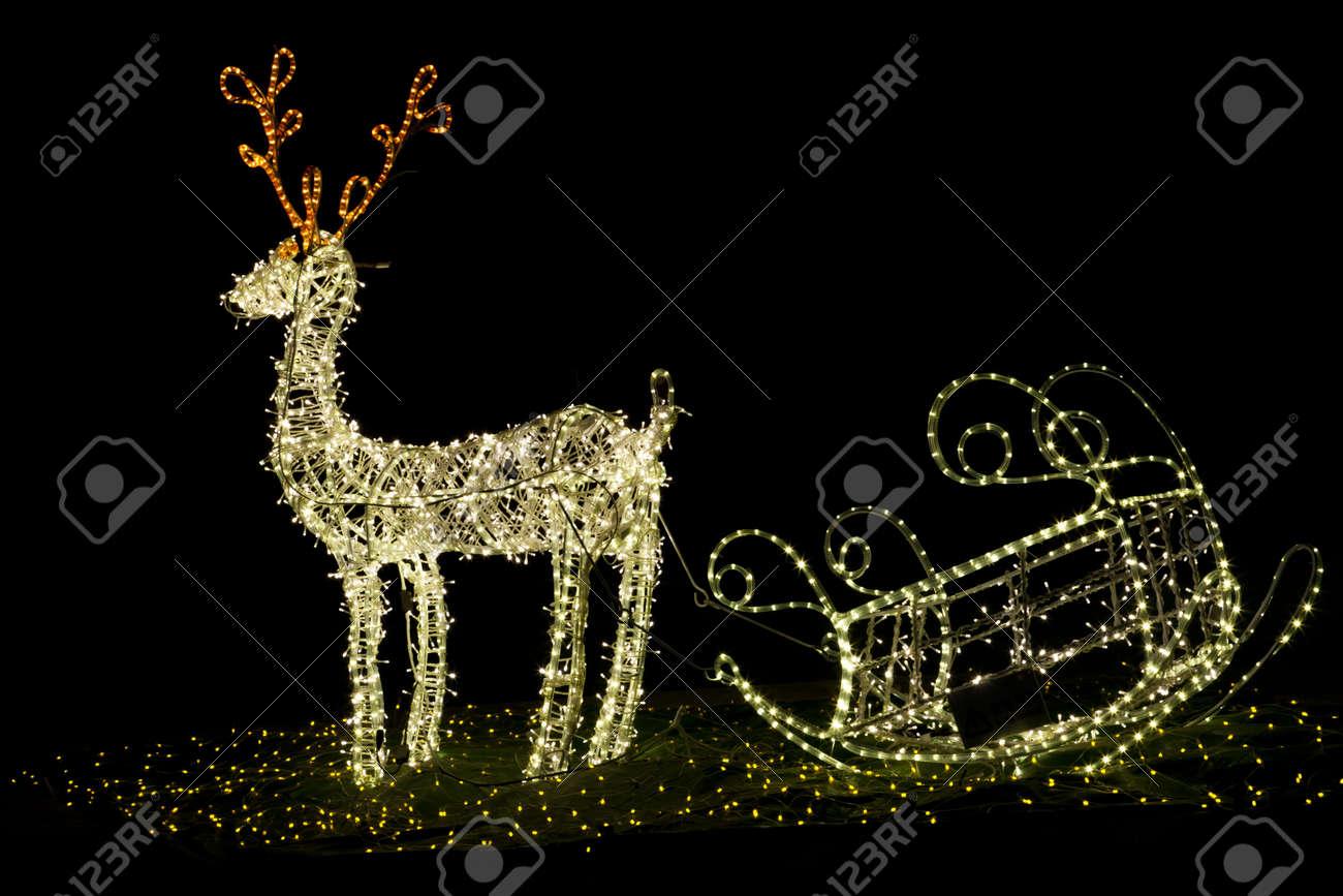 Shining christmas reindeer at night Stock Photo - 11433348