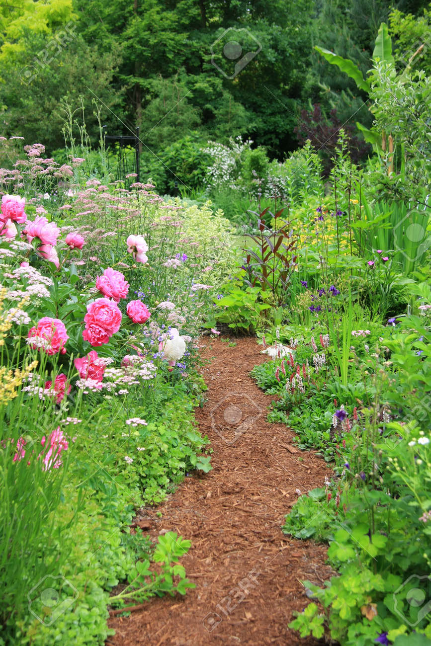 Pretty Path In An English Cottage Garden Stock Photo Picture And