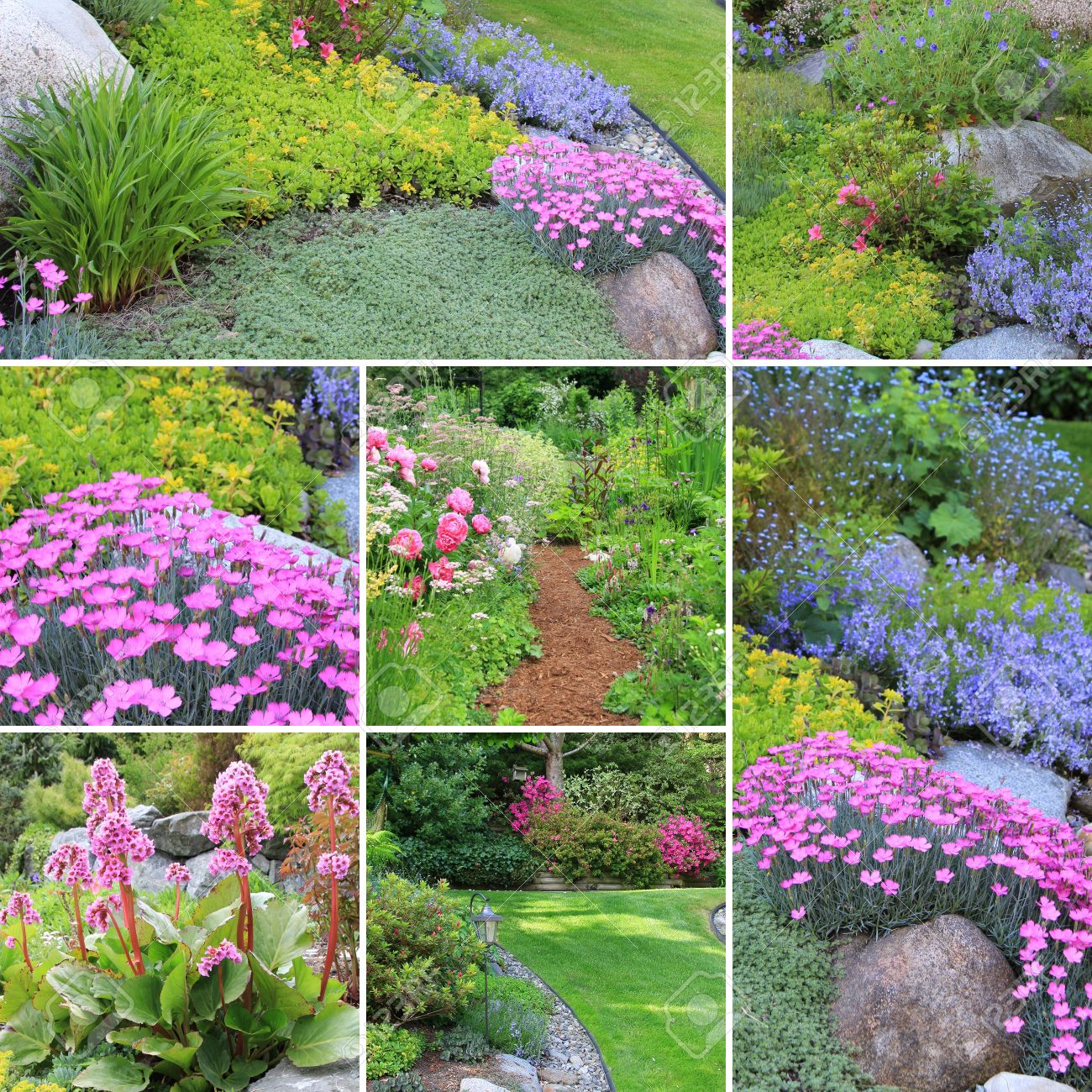 Collage Von Schönen Gärten Im Frühling Lizenzfreie Fotos Bilder
