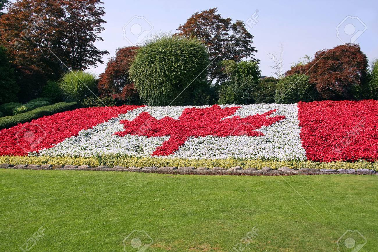Welcome to canada flag done in red and white begonia flowers stock stock photo welcome to canada flag done in red and white begonia flowers mightylinksfo