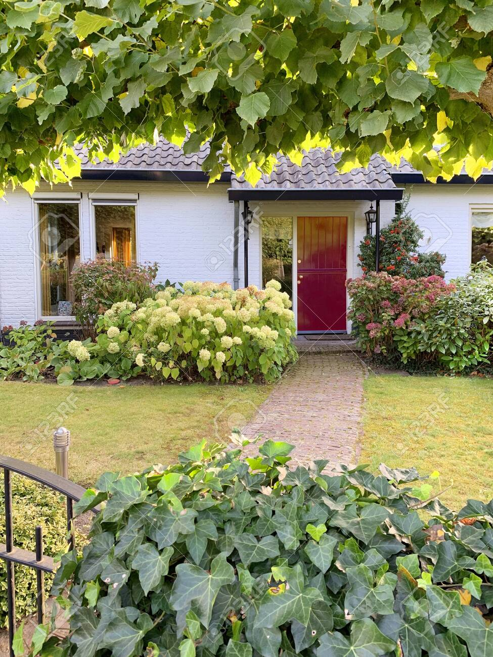 Dutch charming brick house with small gate and cobblestone garden path leading to red front door. - 131792013