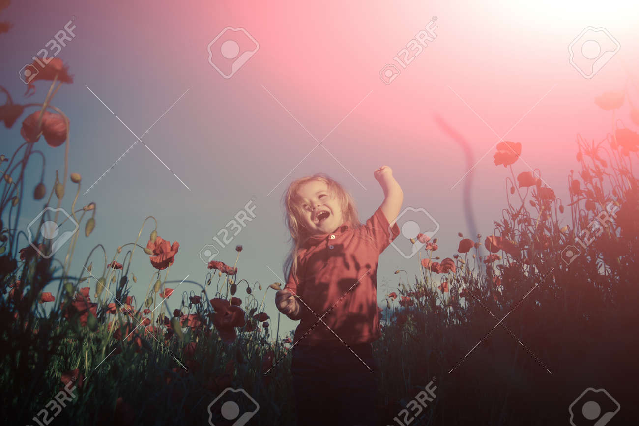 Happy walk in nature with a child. Happiness. Cheerful boy in the field with poppies. - 163411710