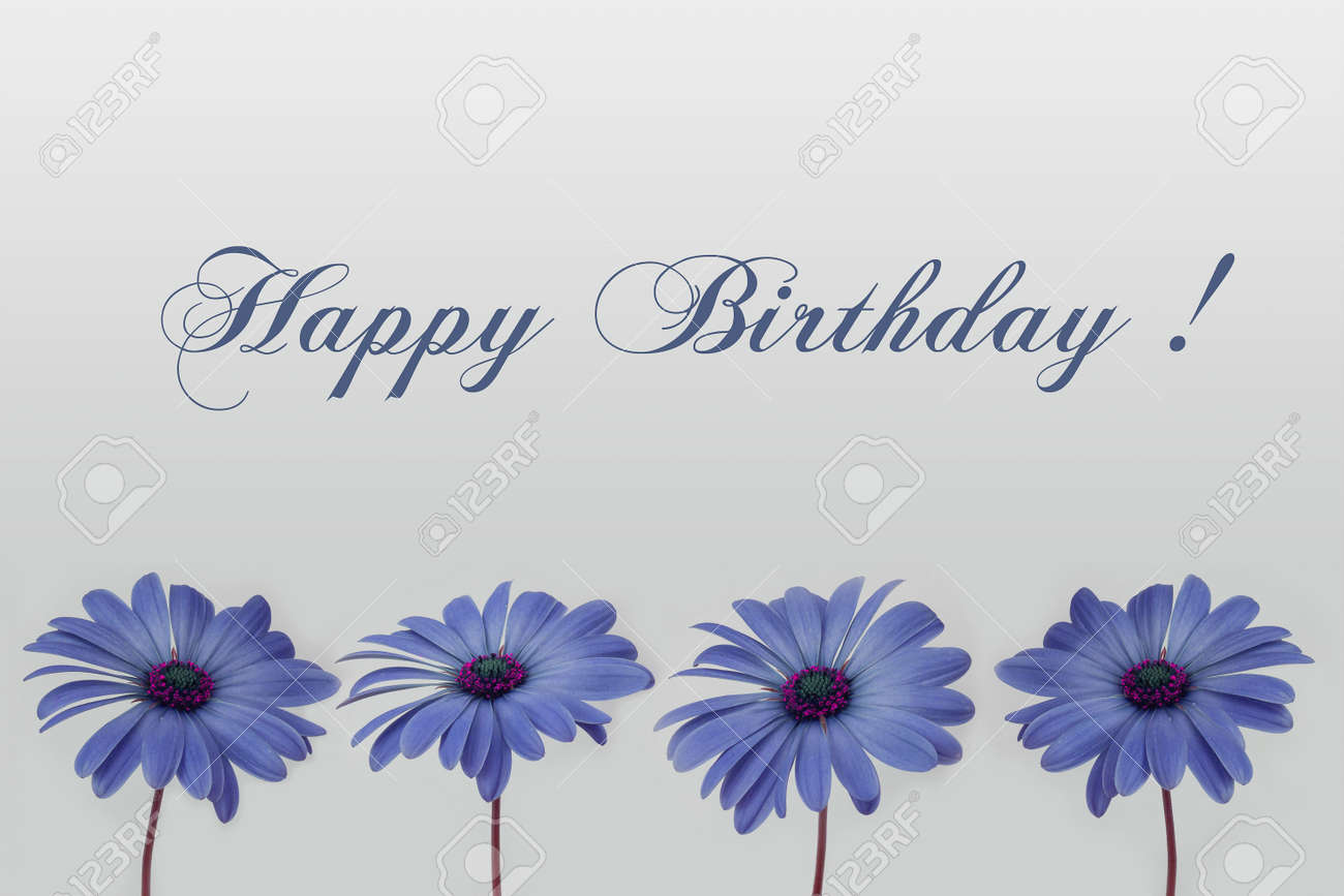 happy birthday card flower decoration stock photo, picture and, Birthday card