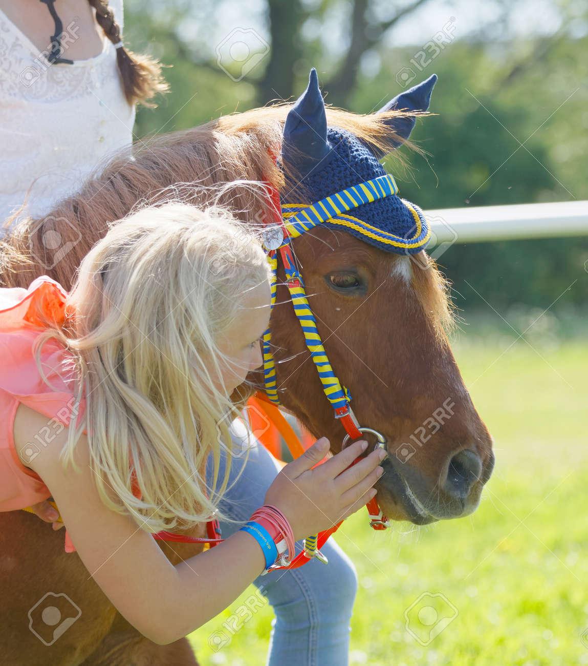 ストックホルムスウェーデン 2017 年 6 月 6 日 若い女の子は Gardet で Nationaldags Galoppen でマッフルのかわいいポニー ギャロップ競走馬をストロークします2017 年 6 月 6 日ストックホルムスウェーデン