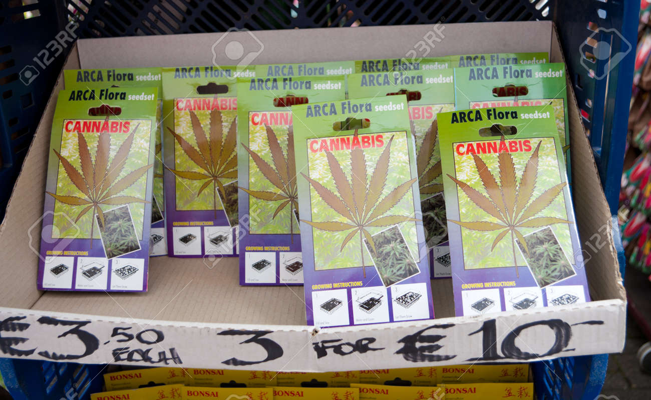 cannabis seed for sale in Amsterdam market Stock Photo - 7509380