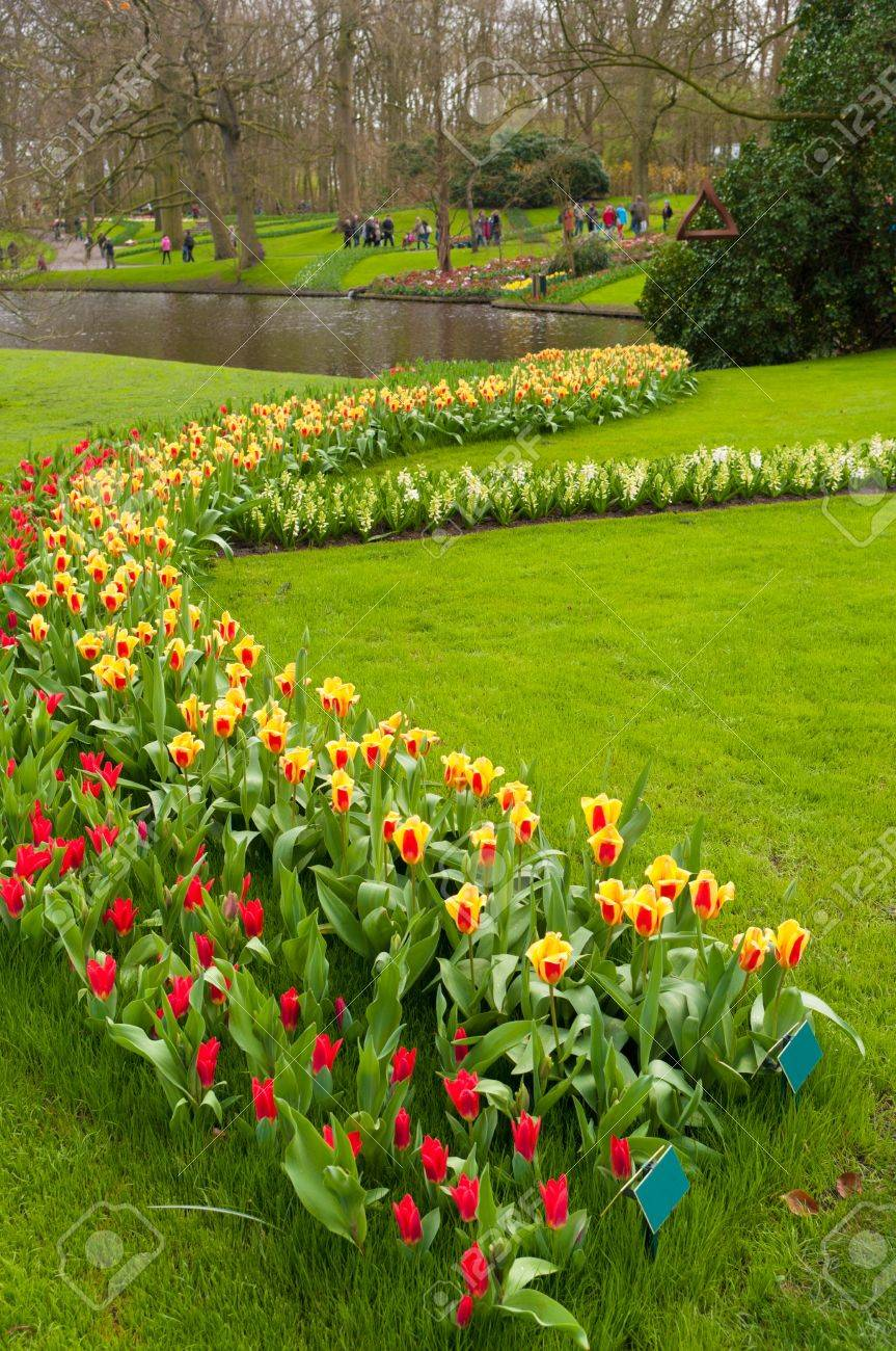 Belle jardin aménagé avec des tulipes dans le Keukenhof, Lisse