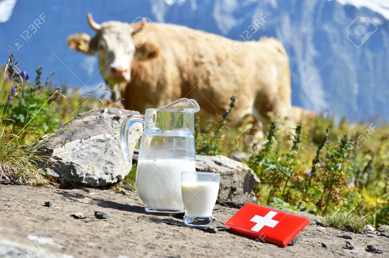 Swiss Chocolate And Jug Of Milk On The Alpine Meadow Switzerland ...