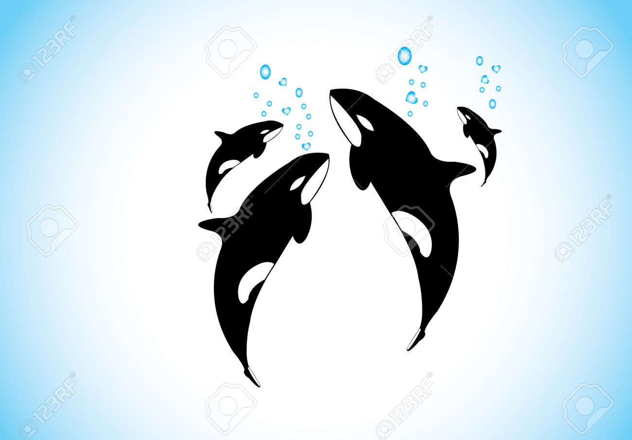 1,493 Killer Whale Cliparts, Stock Vector And Royalty Free Killer ...