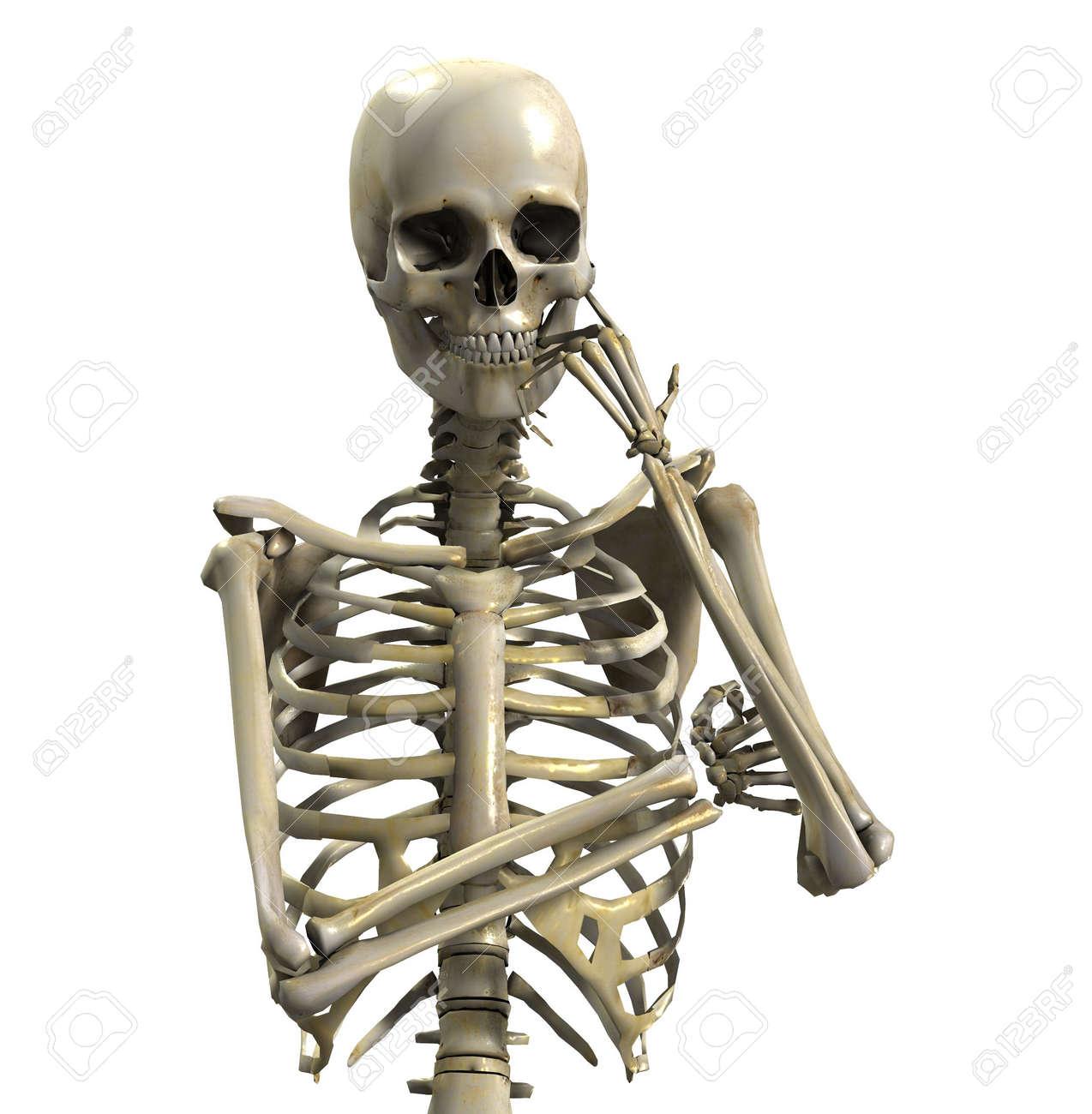 一生懸命に考えている骸骨。 ロ...