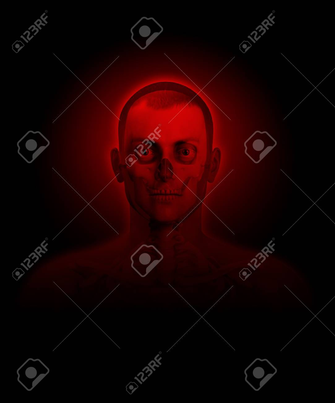 X rayed man with bones and flesh visible Stock Photo - 15830549