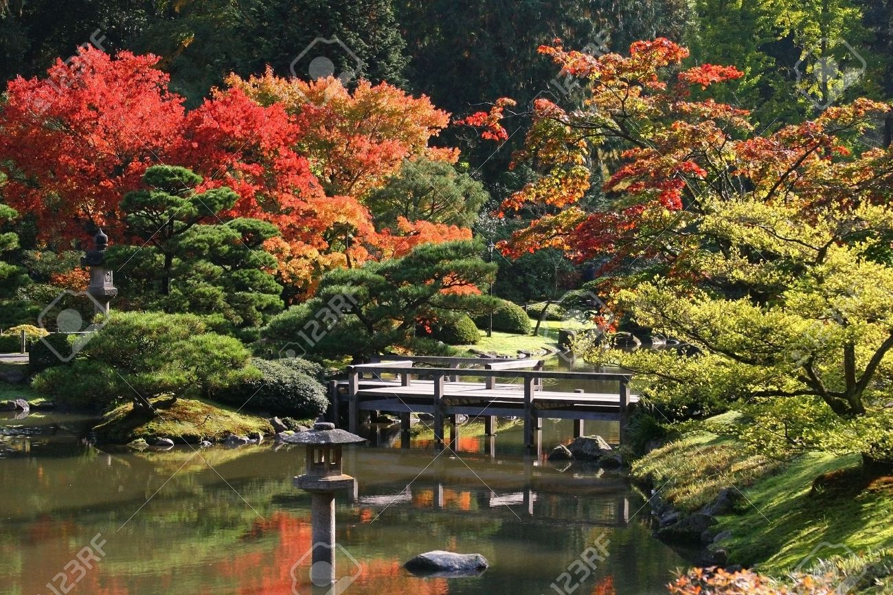 Arboretum,Seattle Japanese Garden At Washington Park Stock Photo ...
