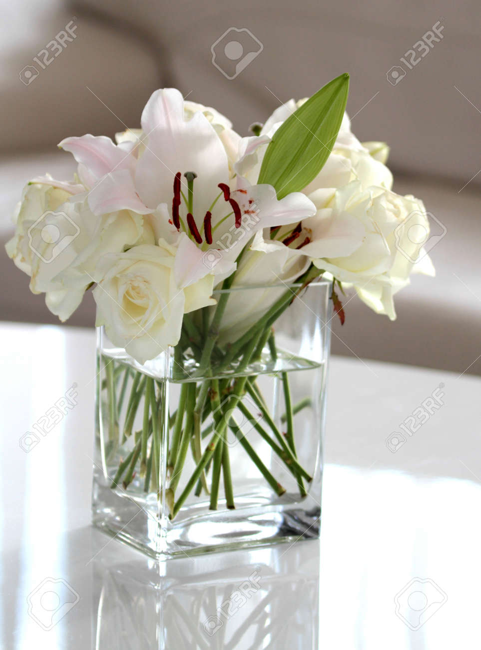 White Flowers In A Vase Stock Photo Picture And Royalty Free Image