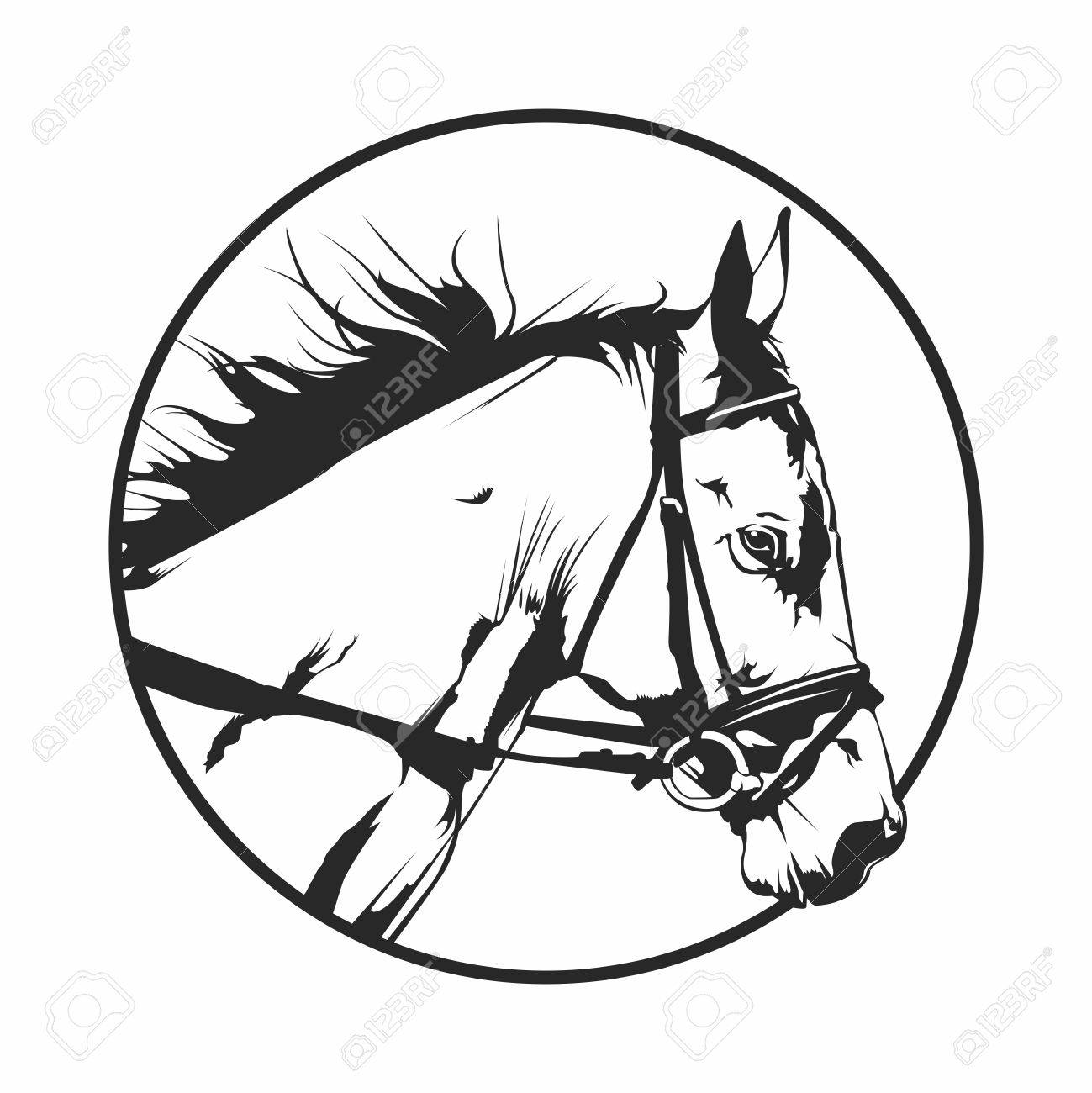 Vector Monochrome Retro Vintage Horse Racing Head Round Isolated Royalty Free Cliparts Vectors And Stock Illustration Image 61601502