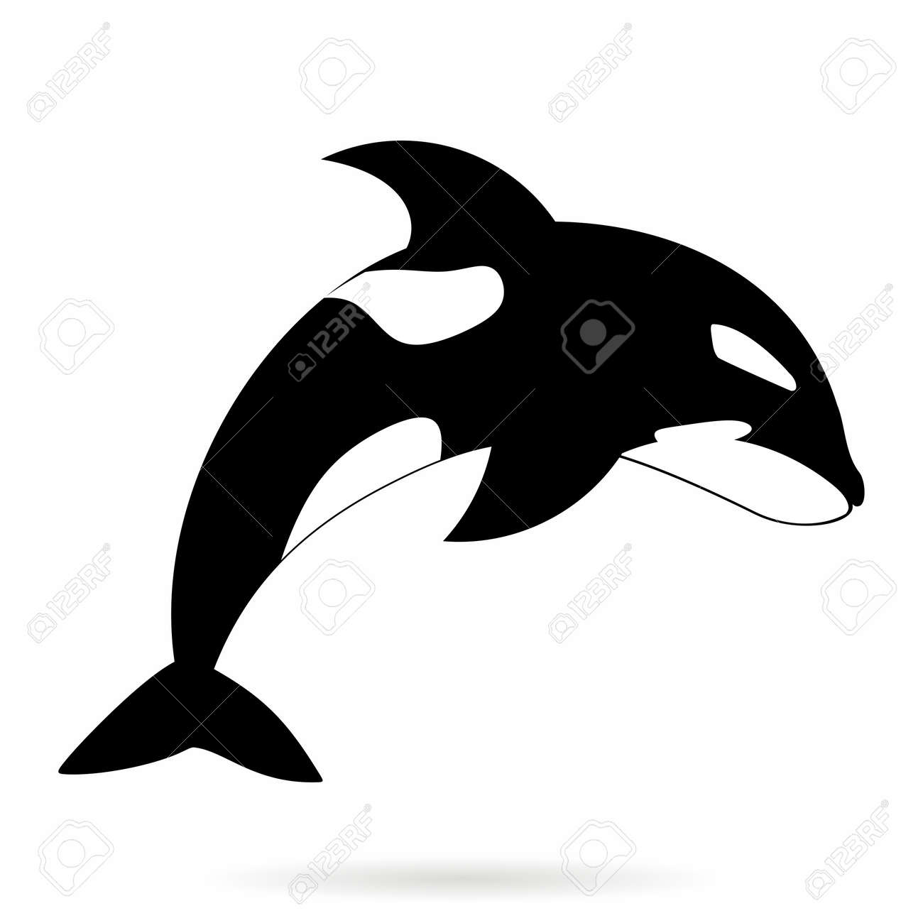 vector vector monochrome simle orca killer whale outline illustration isolated on white background - Whale Outline