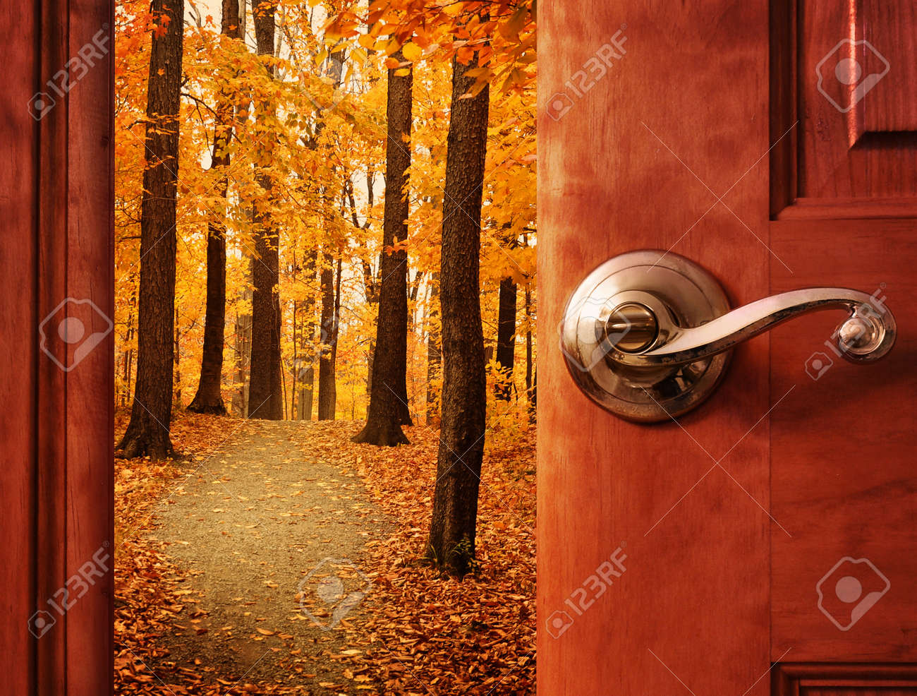 hidden images u0026 stock pictures royalty free hidden photos and