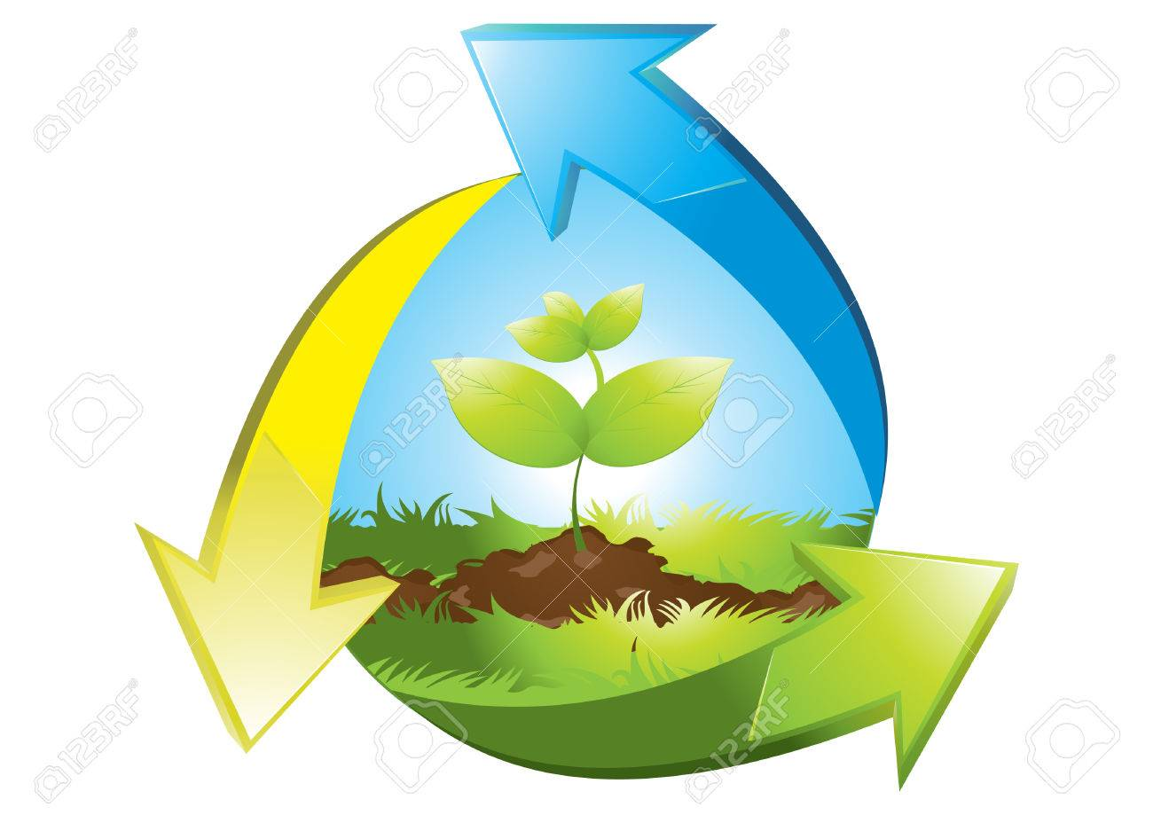 seedlings Stock Vector - 6014998