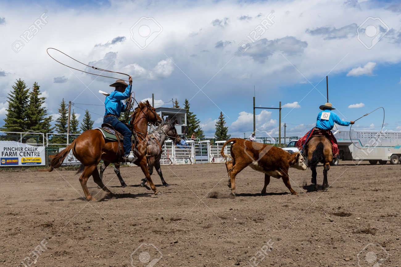 Rodeo Bronco Riding in Pincher Creek Canada - 138642252