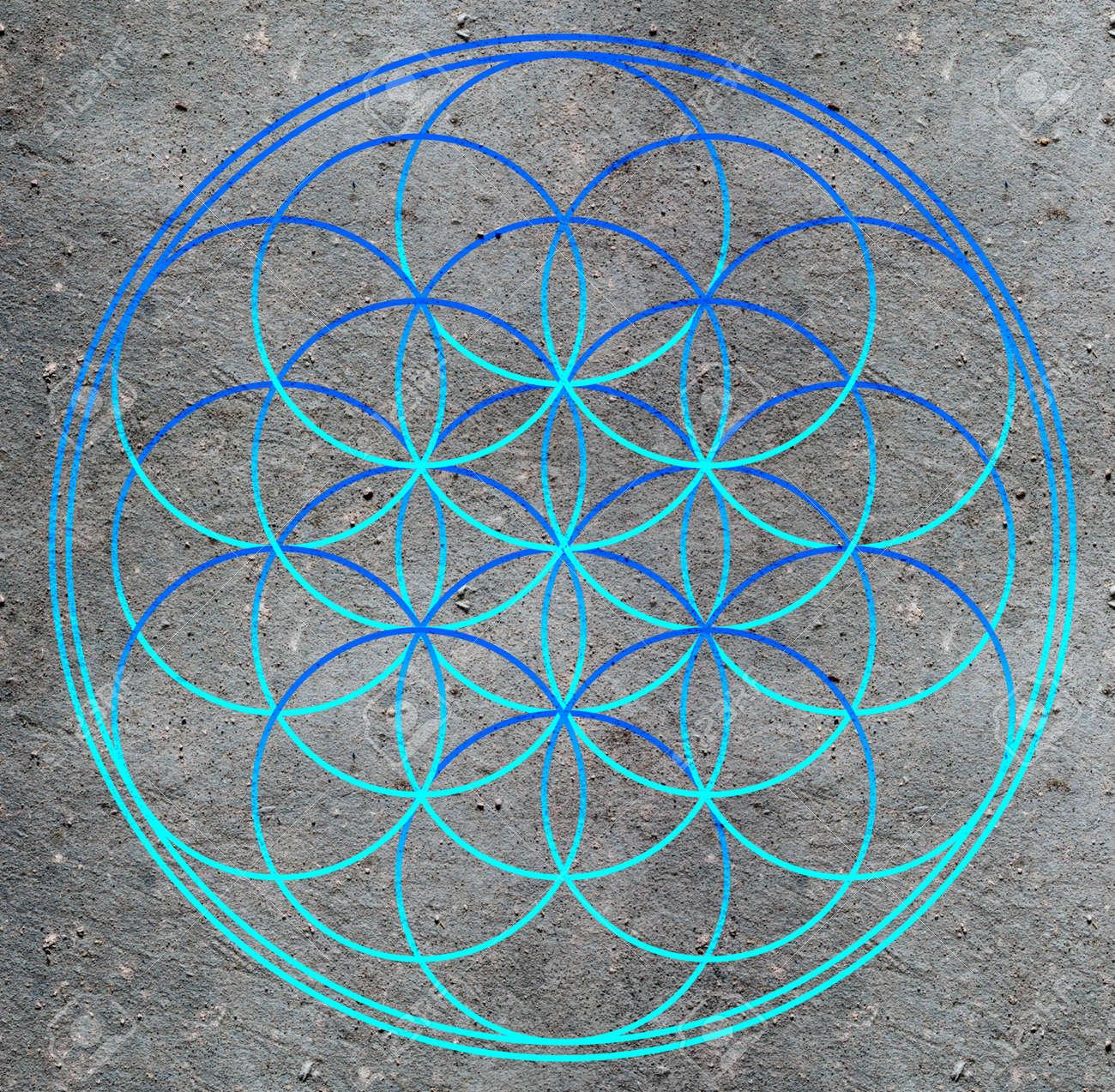 Flor De La Vida Geometría Sagrada Símbolo De La Armonía Y El